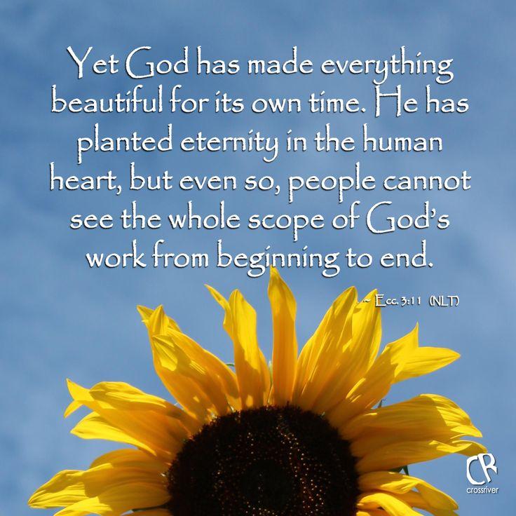 4be44903daa088dfc5efa80a54616c0d--daily-bible-verses-bible-scriptures